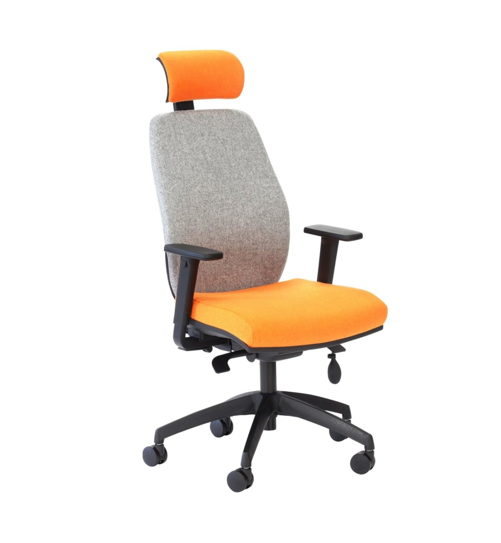 Audax Ergo Executive Chair With Arms